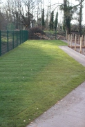 The bottom Gardens starting to look better after awful weather December 2012